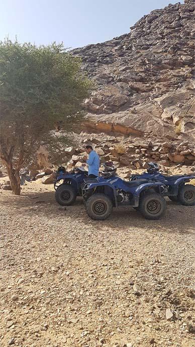 tour in sahara