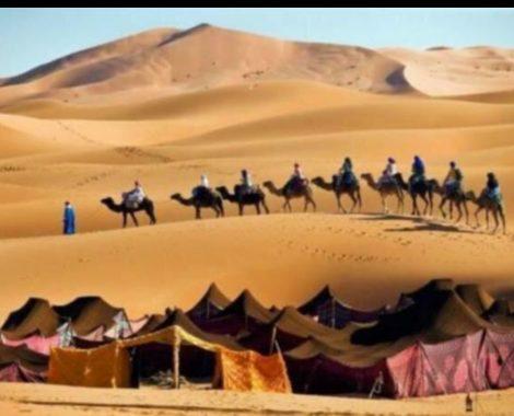 paseo-en-camello